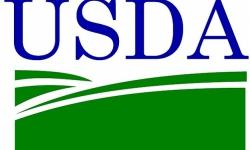 Mỡ thực phẩm SKF LGFP 2, Mỡ thực phẩm theo tiêu chuẩn USDA H1 Hoa kỳ