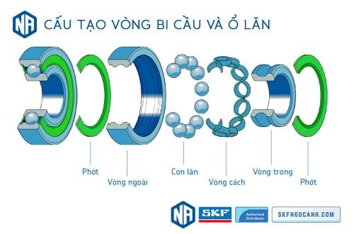 Khái niệm cơ bản về vòng bi - bạc đạn, các chủng loại vòng bi SKF thông dụng